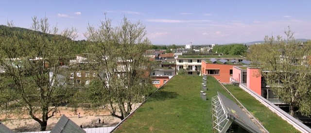 Green Roofs in Freiburg