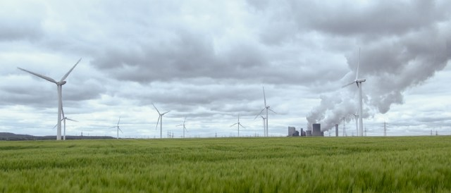 The German Coal Conundrum