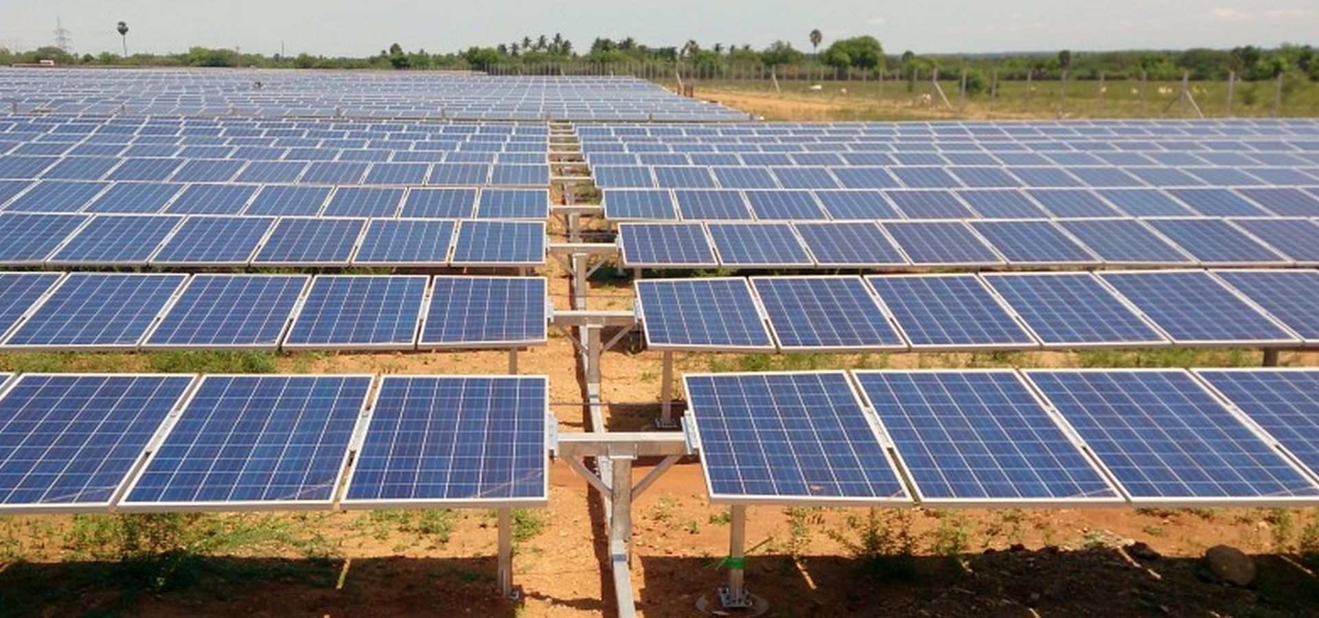 Solar cells on a dry field in India