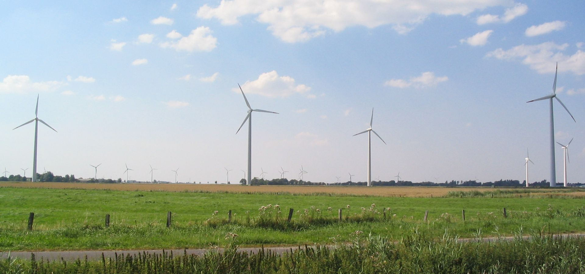 A grassland and windmills
