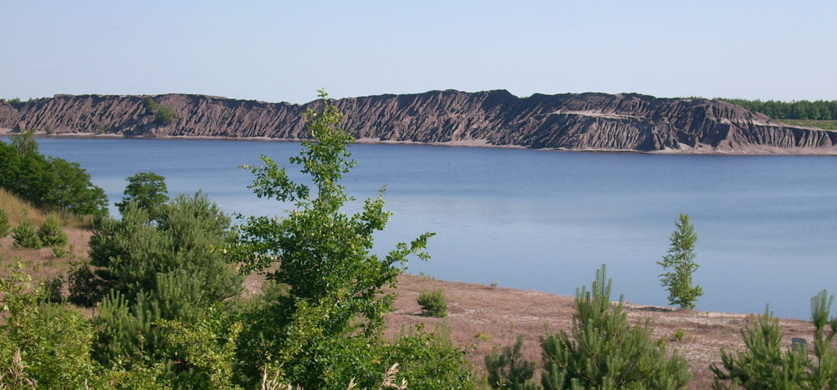 the lake landscape of Lausitz, a blue lake with a sandy shore and trees, coal cliffs behind it