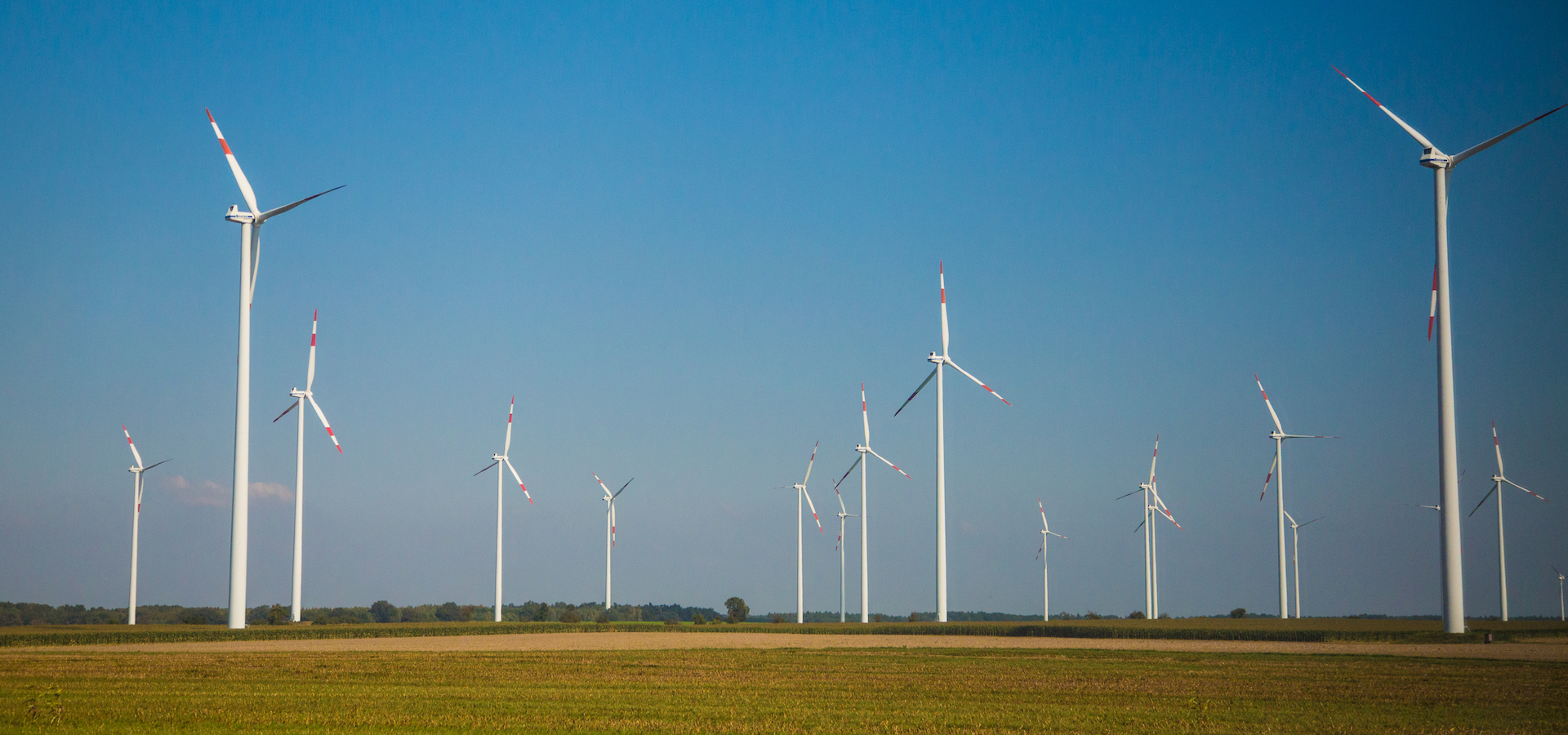 windmills in a flat field with blue sky