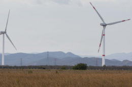 Two windmills in a field of grain with workers moving cables