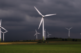 a growing field with windmills and behind them a stormy sky