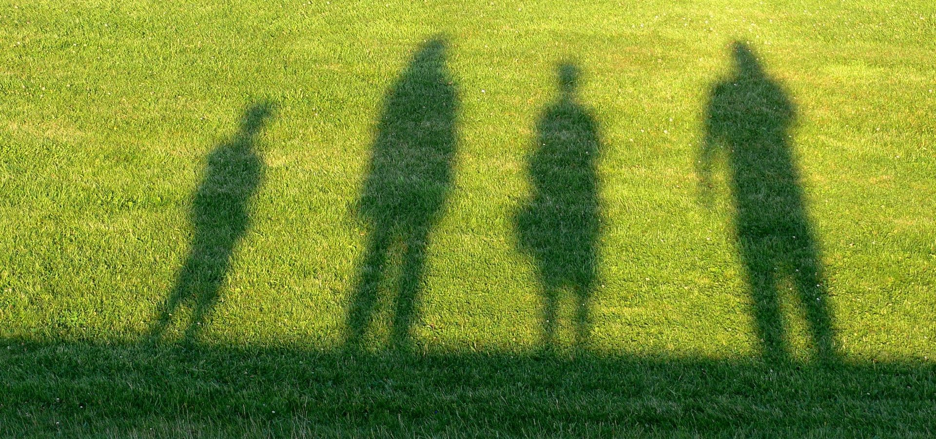 shadows of children and adults against green grass
