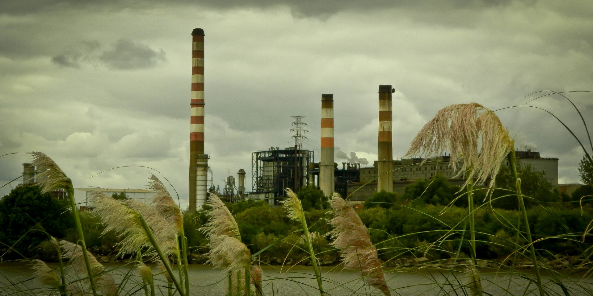 view of the thermal power station Costanera Argentina on a cloudy day with smoke behind
