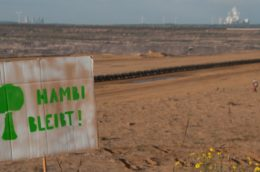 Environmentalists demonstrated on Saturday peacefully to preserve the Hambacher Forest