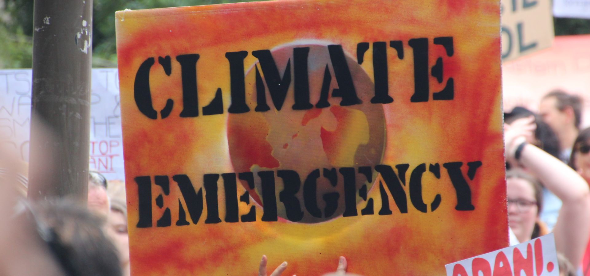 More and more people protest for rapid action against climate change
